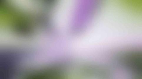 post_photo_05_v01